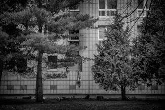 8334_hdr© 2016 Stephan Noe-