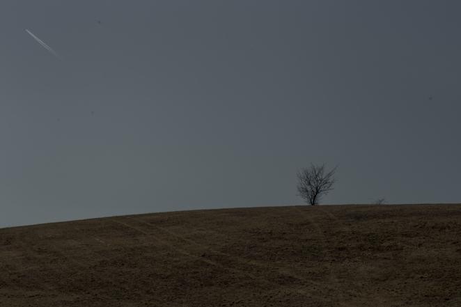AmDreißigstenMärz © 2018 Stephan -3829