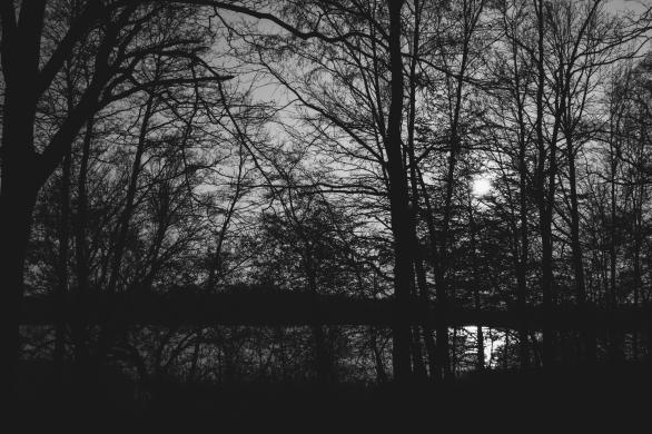 AmAchtenApril© 2019 Stephan Noe-7488