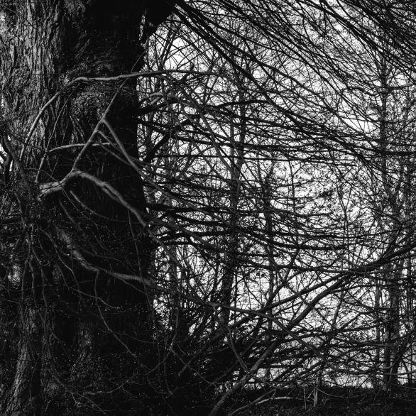 AmAchtenApril© 2019 Stephan Noe-7507