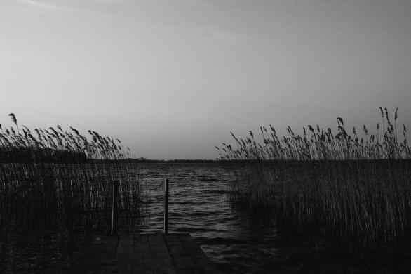 AmAchtenApril© 2019 Stephan Noe-7508