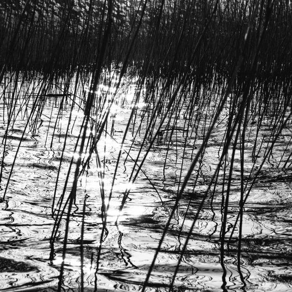 AmAchtenApril© 2019 Stephan Noe-7515-2
