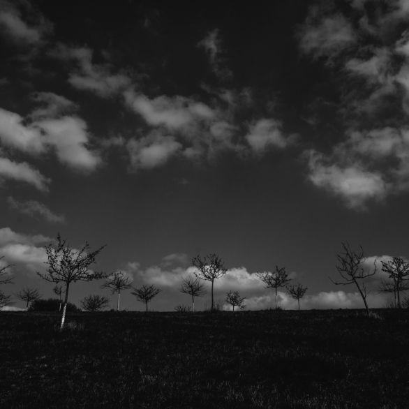 AmNeuntenApril© 2019 Stephan Noe-7529