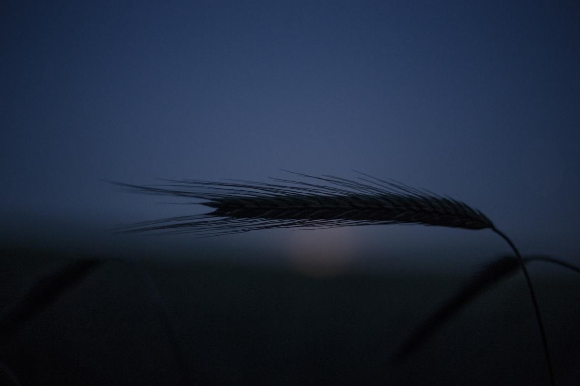 AmSiebZehntenJuni© 2019 Stephan Noe-2111